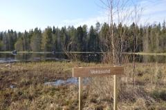 Vekasund är den första av sjöarna man kommer till från startplatsen vid sportplanen.